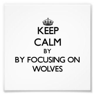 Houd rust door zich op Wolven te concentreren