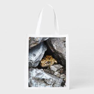Huiden van een de bevlekte Kikker onder de rotsen Shoppers