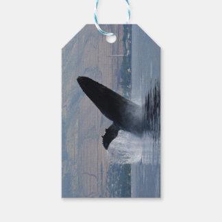 humback walvis het overtreden cadeaulabel