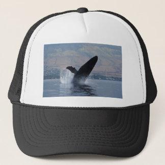 humback walvis het overtreden trucker pet
