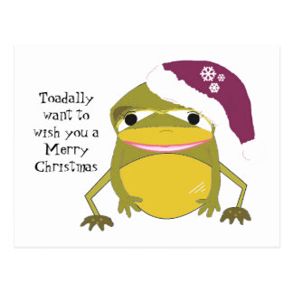 Humoristische Kikker in een Pet van Kerstmis Briefkaart
