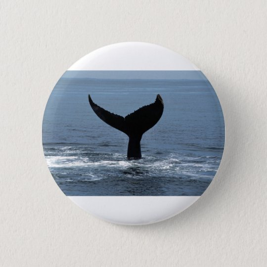 Humpback whale tail ronde button 5,7 cm