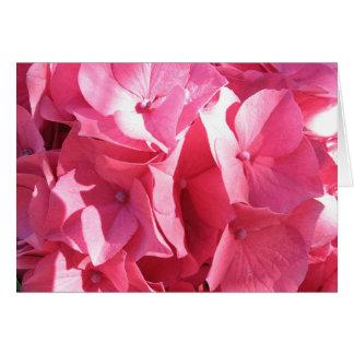 Hydrangea hortensia 2 van Katie Briefkaarten 0