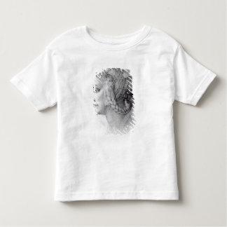 Ideaal Hoofd van een Vrouw, c.1525-28 Shirt