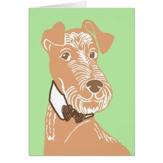 Iers Terrier die een Wenskaart Bowtie dragen