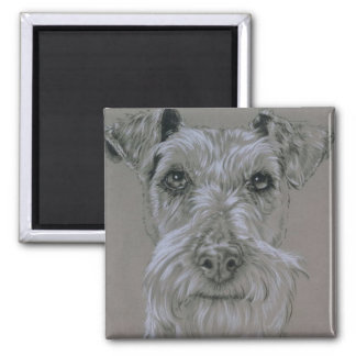 Iers Terrier Magneet