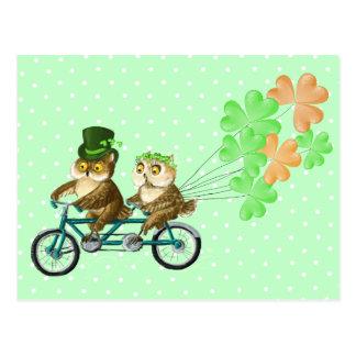 Ierse bicyсleuilen met klaver baloons briefkaart