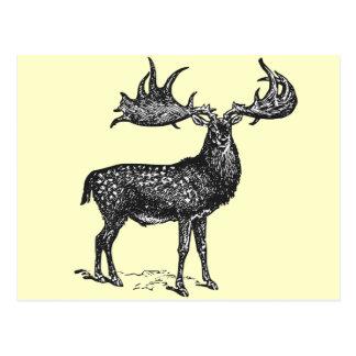 Ierse Herten Briefkaart