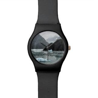 Ijs in het Horloge van de Fjord van het Wapen