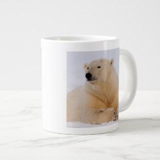 ijsbeer, maritimus Ursus, die op rusten Grote Koffiekop