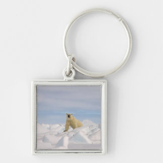 ijsbeer, maritimus Ursus, in ruw ijs Zilverkleurige Vierkante Sleutelhanger