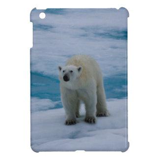 Ijsbeer op pakijs hoesjes voor iPad mini