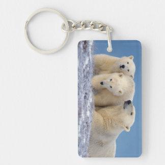 ijsbeer, Ursus maritimus, zeug met welpen 2-Zijde Rechthoekige Acryl Sleutelhanger