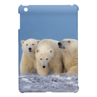 ijsbeer, Ursus maritimus, zeug met welpen iPad Mini Case
