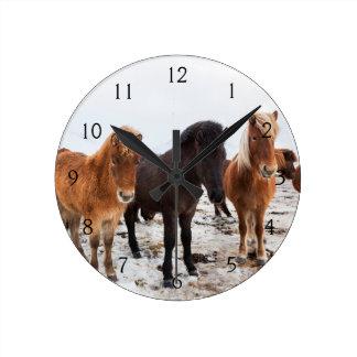 Ijslands Paard tijdens de winter op IJsland Ronde Klok