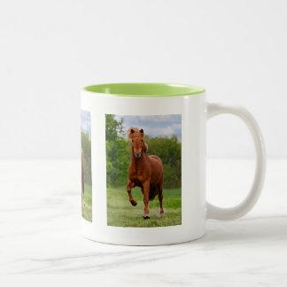 Ijslands Pony bij Minnaars van een de Grappige van Tweekleurige Koffiemok