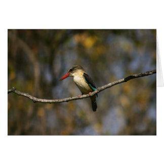 Ijsvogel bruin-met een kap briefkaarten 0
