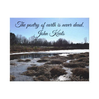 Ijzige Vijver w/Quote door John Keats Canvas Print