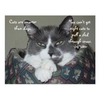 Ik ben Kat… Briefkaart