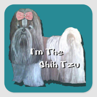 Ik ben Shih Tzu - Vierkante Stickers