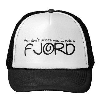 Ik berijd een Fjord Trucker Pet