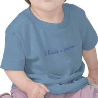 Ik heb een geheime… t shirts