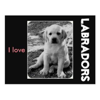 Ik houd van Labradors Briefkaart
