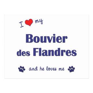 Ik houd van Mijn Bouvier des Flandres (Mannelijke Briefkaart
