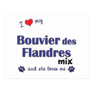 Ik houd van Mijn Bouvier des Flandres Mix Briefkaart