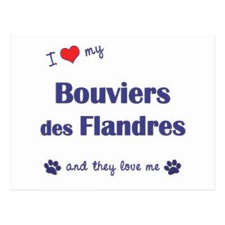 Ik houd van Mijn Bouviers des Flandres Briefkaart
