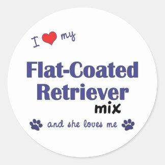 Ik houd van Mijn vlak-Met een laag bedekte Ronde Sticker
