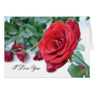 Ik houd van u - Rode rozen Briefkaarten 0