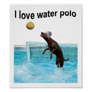 Ik houd water van polo poster