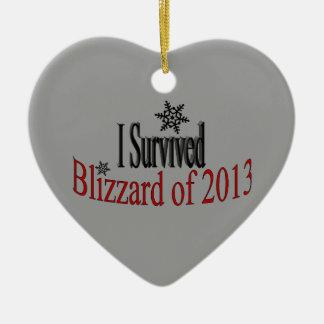 Ik overleefde het Ornament van de Blizzard 2013
