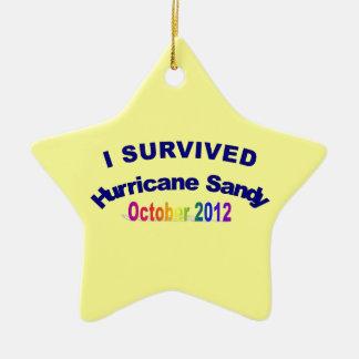 Ik overleefde het Zandige Ornament van de Orkaan