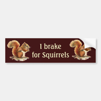 Ik rem voor Eekhoorns, de Dieren van de Waterverf Bumpersticker