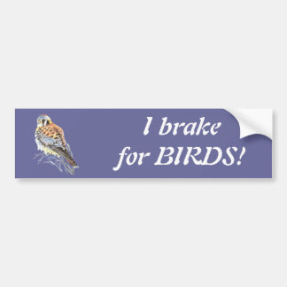Ik rem voor Vogels - de Waterverf van de Torenvalk Bumpersticker