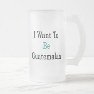Ik wil Guatemalaans zijn Matglas Bierpul