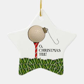 Inbare Kerstmis van het golf Keramisch Ster Ornament