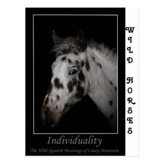 """Individualiteit"" - Wilde Spaanse Mustangen Briefkaart"