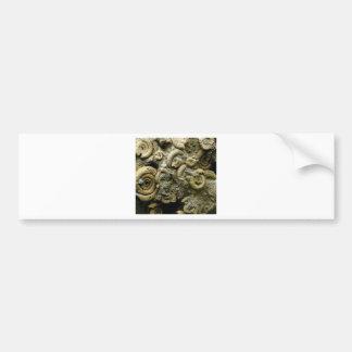 ingebedde slakkenfossielen bumpersticker