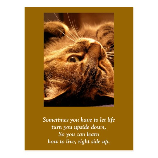 Inspirational card: Life up side down Briefkaart