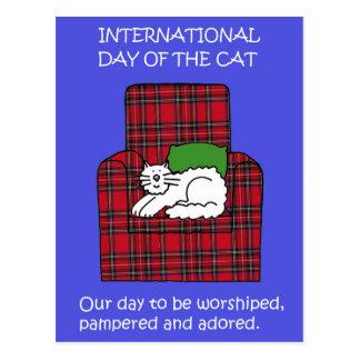 Internationale Kat Dag 8 Augustus Briefkaart
