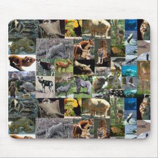 Internet safari mousemat muismat