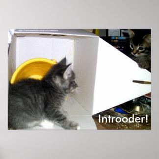 Introoder! Het poster van het katje