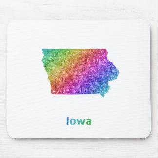 Iowa Muismat