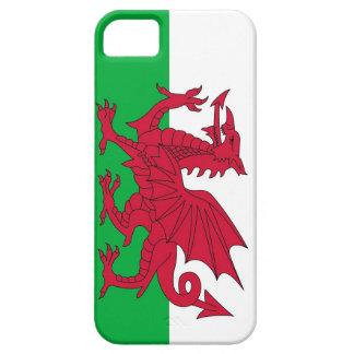 IPhone 5 Hoesje met Vlag van Wales