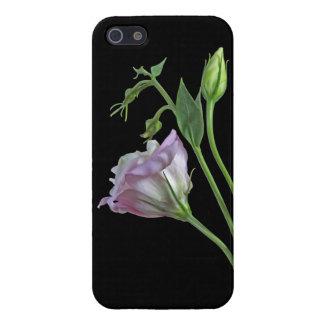 iPhone 5 van de ballerina Hoesje Savvy iPhone 5 Cases
