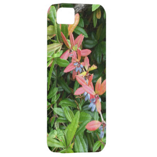 iPhone SE + iPhone 5/5S, Bessen Barely There iPhone 5 Hoesje