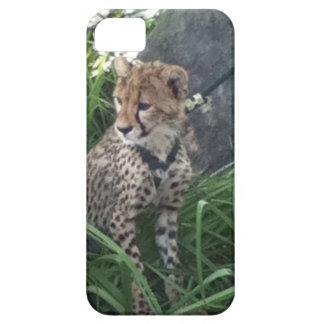 iPhonehoesje van de jachtluipaard Barely There iPhone 5 Hoesje